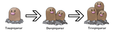 Evolution taupe.png