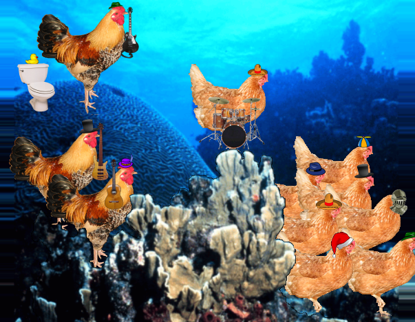 File:Chicken of the sea.png