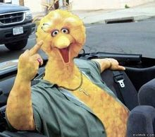Big Bird Gone Bad.jpg