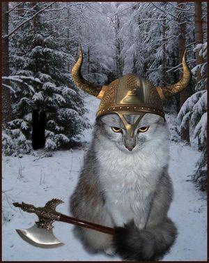viking kitties gay bar