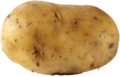 Plain-potato-photo-1.png