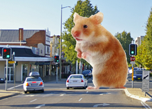 Giant Doom Hamster.png