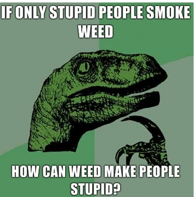 Weed stupid.png