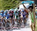 Borat crashes Tour de France.jpg