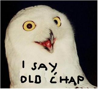 Owlchap.png