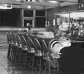 Chipmunk in bar.jpg