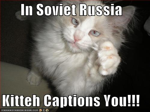 Funny-pictures-kitteh-captions-you.jpg