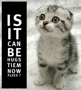 IS IT CAN BE HUGS TIEM NOW PLEES CAT.jpg