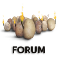 Forum torches3.png