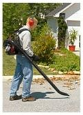 You should always appreciate a leaf blower that does a good job.