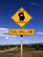 Grue crossing.jpg
