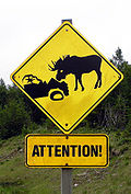 CAUTION: INVINCIBLE MOOSE AHEAD, MOOSE JERKY WILL INCITE BERSERKER MODE