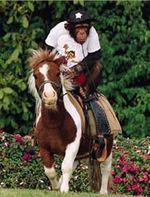 Monkey riding a horse.jpg