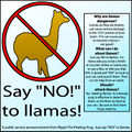 Say NO to llamas.jpg