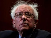 Bernie-bad-hair-day2.jpg
